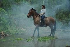 gold-delta-horseback